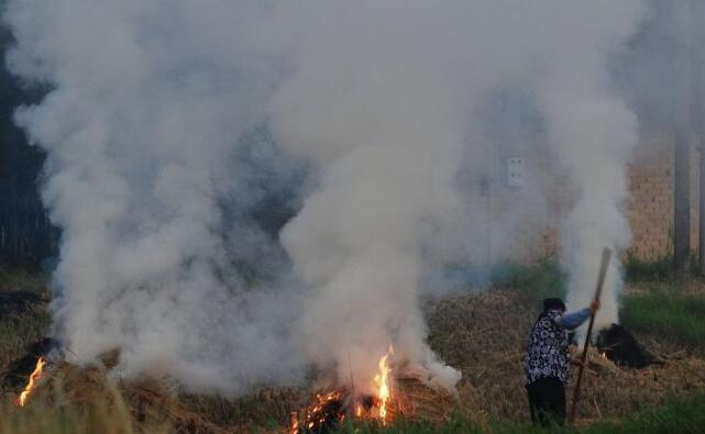 农民焚烧秸秆