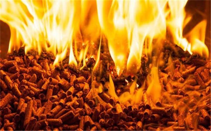 燃烧的秸秆颗粒机的颗粒