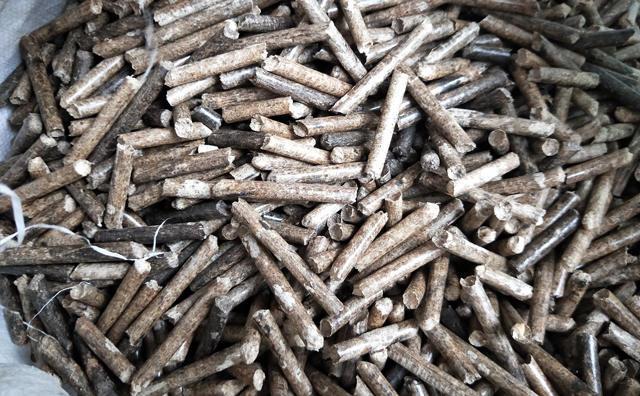 木屑颗粒机加工的颗粒图