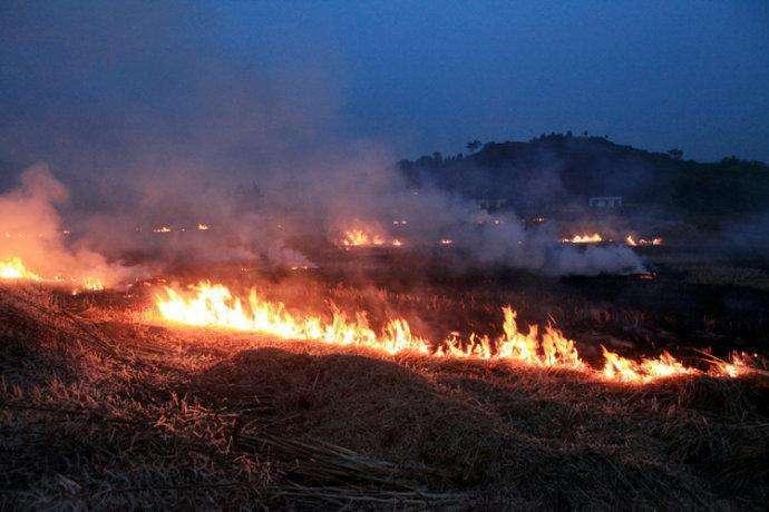 农民晚上偷偷焚烧秸秆