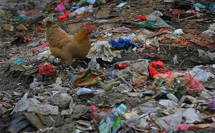 农村垃圾废弃物