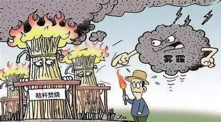 秸秆焚烧导致雾霾