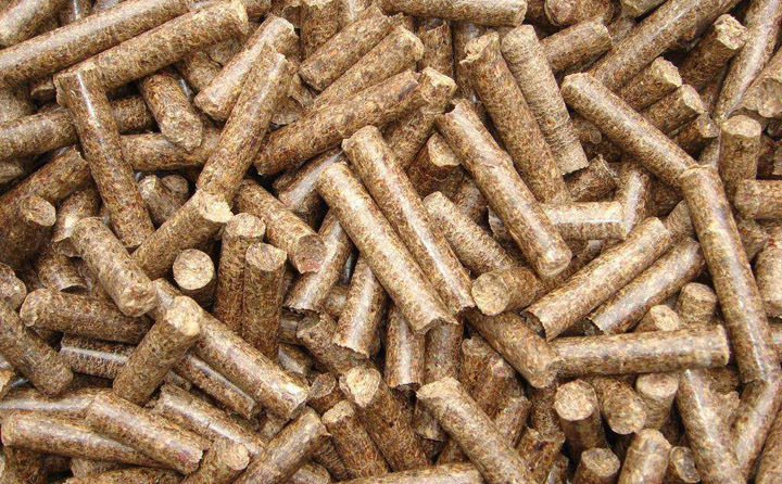 木屑颗粒机压制的颗粒