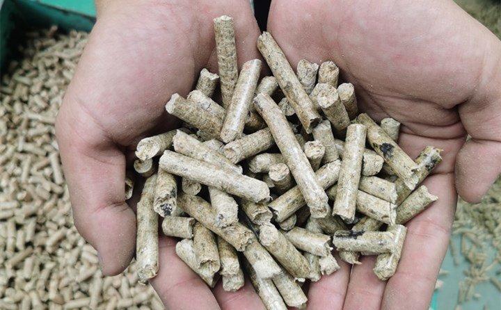 玉米秸秆颗粒机设备加工为颗粒燃料