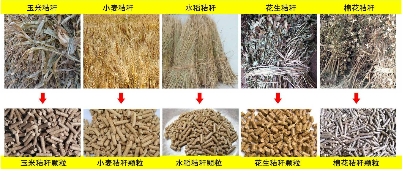 玉米秸秆、小麦秸秆等原材料
