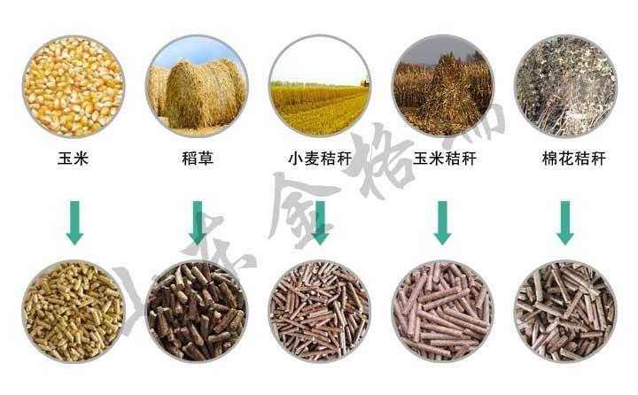 玉米、稻草、稻壳颗粒展示图